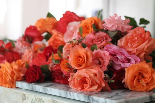 PG_roses1