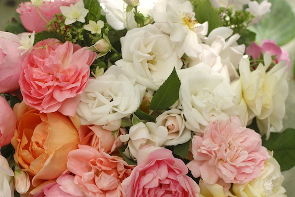 Pg_garden flowers3