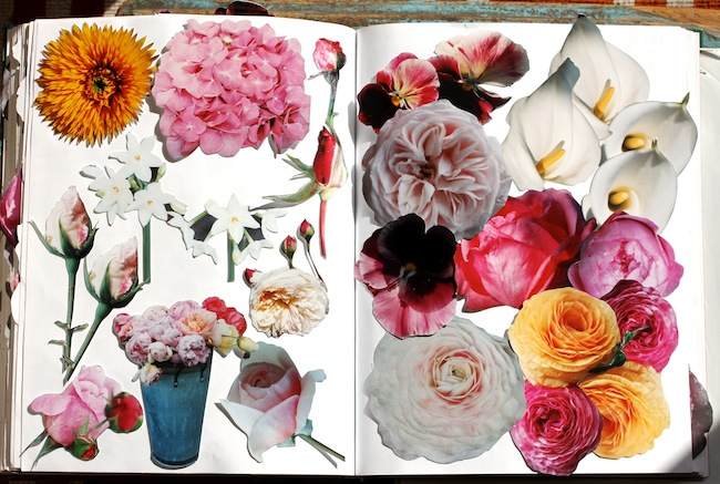 Pg_garden journal