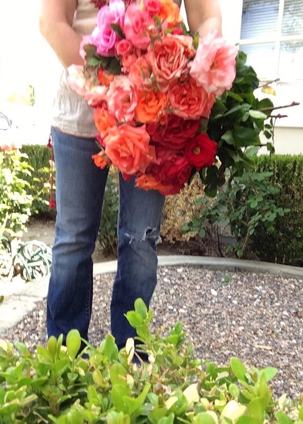 Pamgarrison_gardenroses