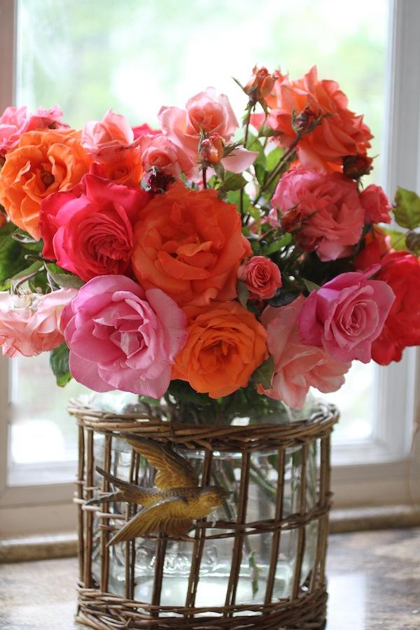 PGarrison-gardenroses