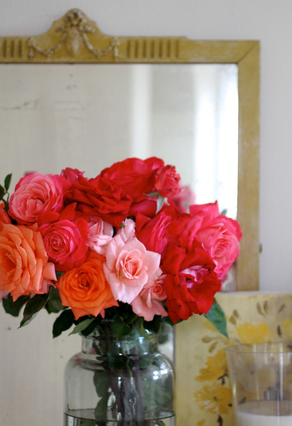 PG_roses from the garden