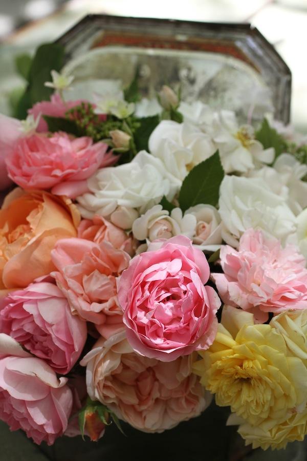Pg_garden flowers2