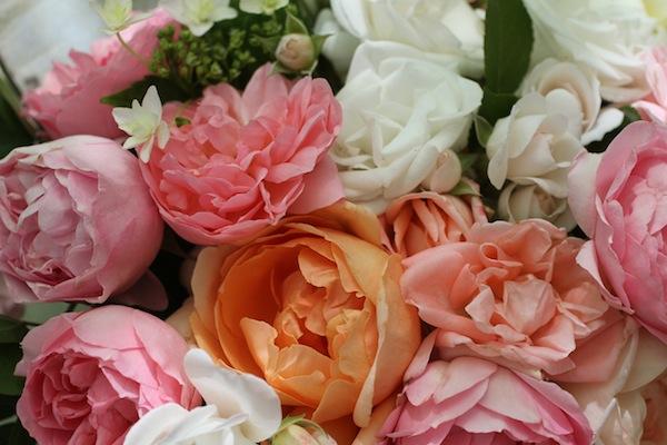 Garrison garden roses