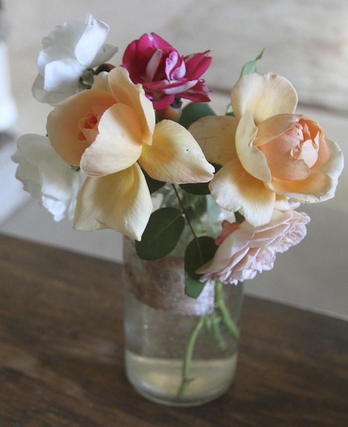 PG roses 4