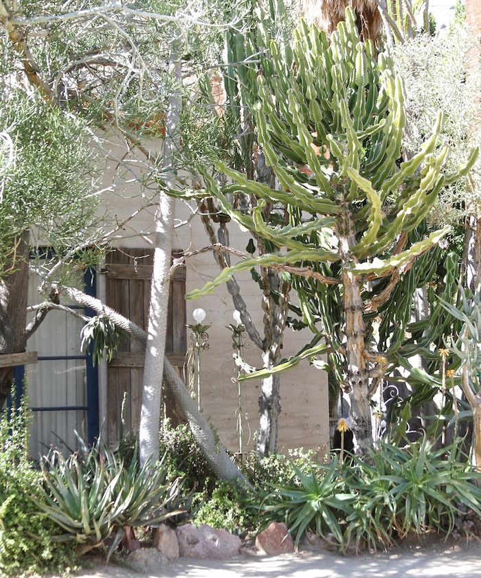 MOORTEN botanical garden 9
