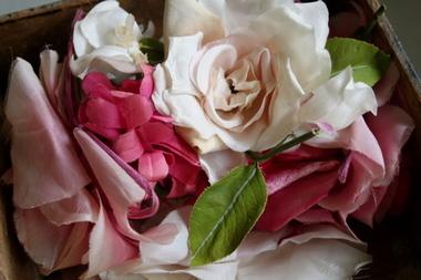 Vintage_flowers_2