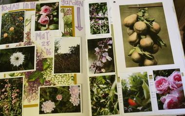 Garden_journal_2