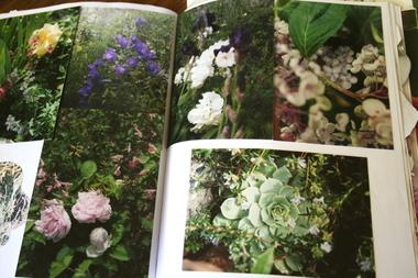 Garden_journal_2b
