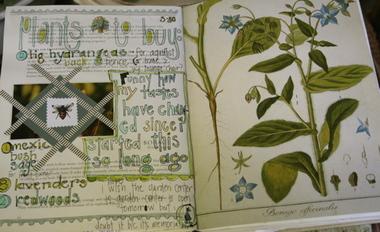 Garden_journal_6