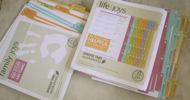 Joys_files