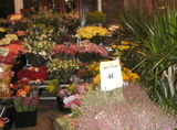 Paris_street_flowers
